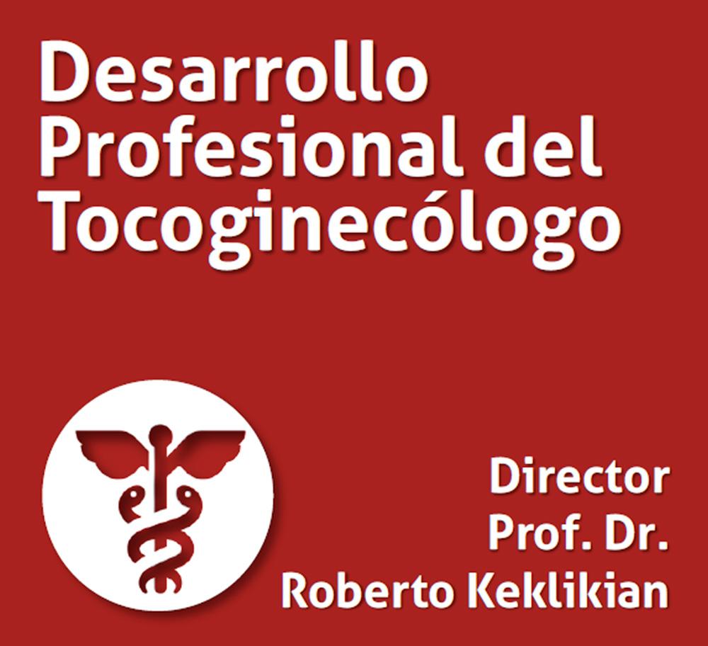 Curso Desarrollo Profesional